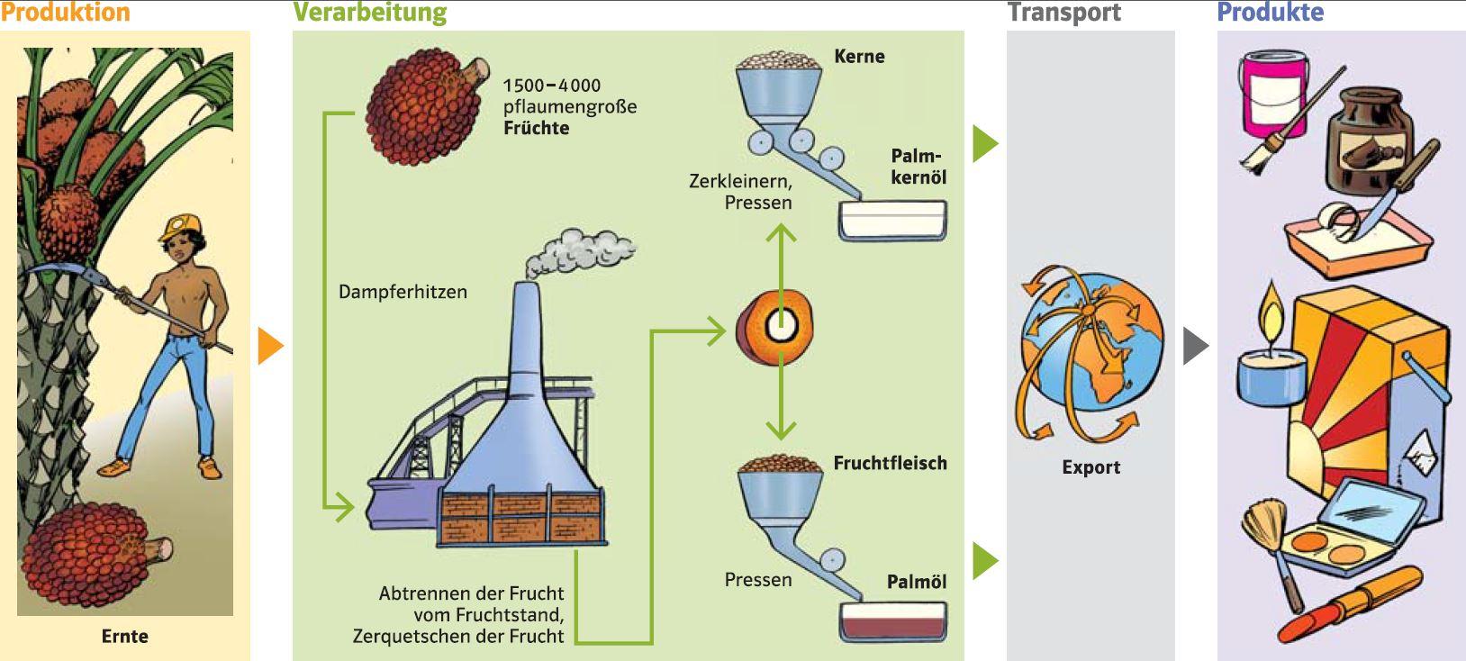 Herstellung Palmöl