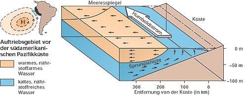 Humboldtstrom