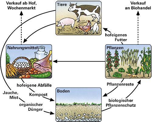 Ernst klett verlag infoblatt kologischer landbau for Definition von boden
